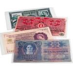 Bolsas para Notas Premium 210